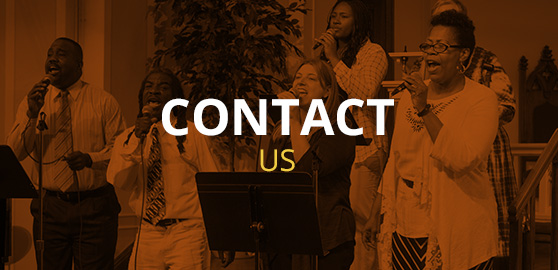 stm-contact-us